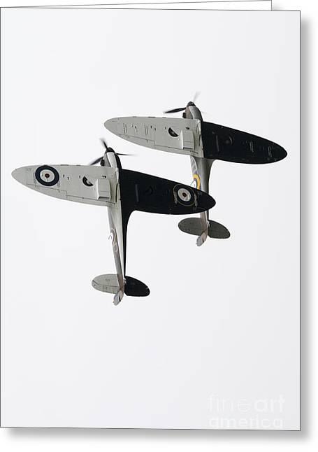 Royal Art Greeting Cards - High Key Spitfires Greeting Card by J Biggadike