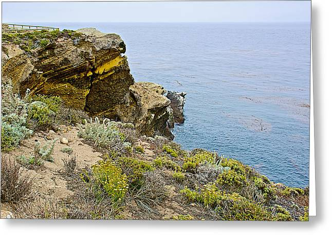 High Point In Point Lobos State Reserve Near Monterey-california Greeting Card by Ruth Hager