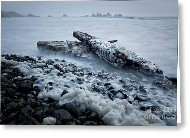 high tide at Seal Rock State Park  Greeting Card by Masako Metz