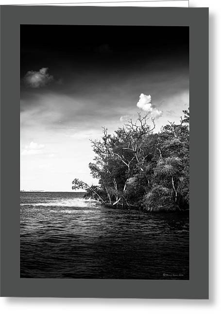 High Tide Greeting Card by Marvin Spates