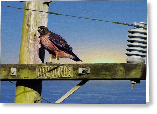Marin County Digital Art Greeting Cards - High Voltage Greeting Card by Stan Angel