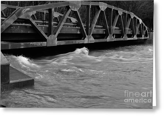 Randolph County Greeting Cards - High Water Greeting Card by Randy Bodkins