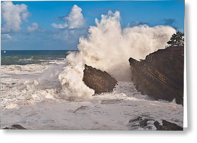 Pacific Ocean Bay Greeting Cards - High Wave Warning at Shore Acres Greeting Card by Alvin Kroon
