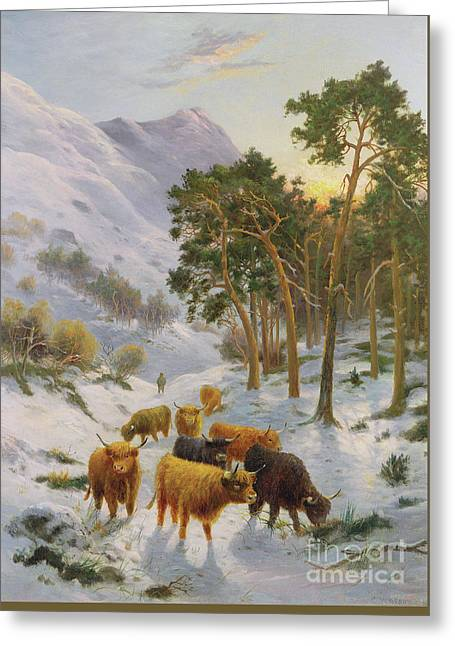Highland Cattle In A Winter Landscape Greeting Card by Charles Watson