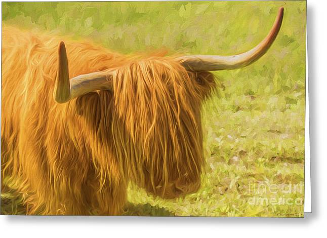 Highland Cow Greeting Cards - Highland Cow Greeting Card by Veikko Suikkanen