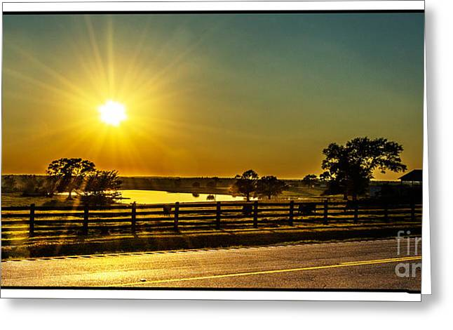 Fence Tapestries - Textiles Greeting Cards - Highway 53 Sunset Greeting Card by James Hennis