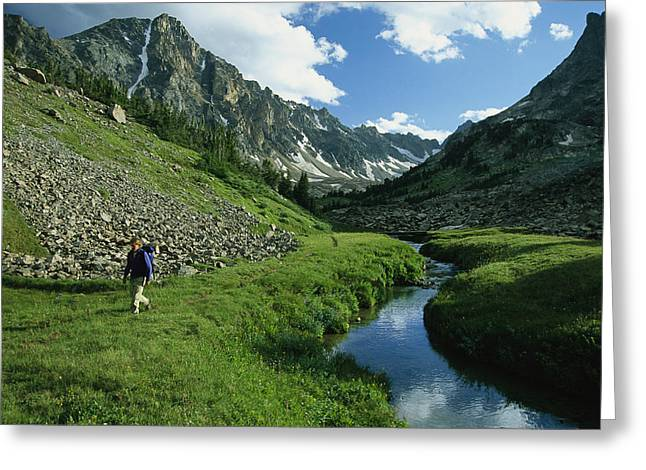 Release Greeting Cards - Hiker Along A Stream In A Beartooth Greeting Card by Kate Thompson