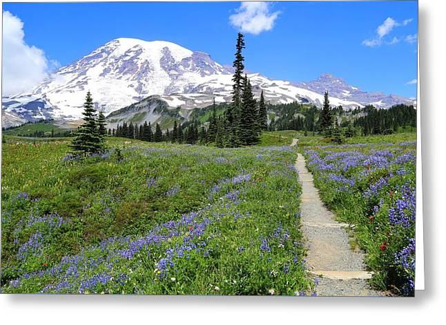 Field. Cloud Greeting Cards - Hiking in the wildflowers Greeting Card by Lynn Hopwood