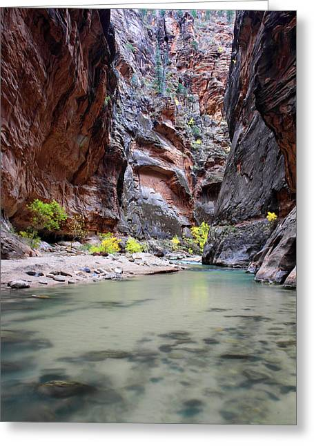 Narrow Canyons Greeting Cards - Hiking the Virgin Narrows in Zion Greeting Card by Pierre Leclerc Photography