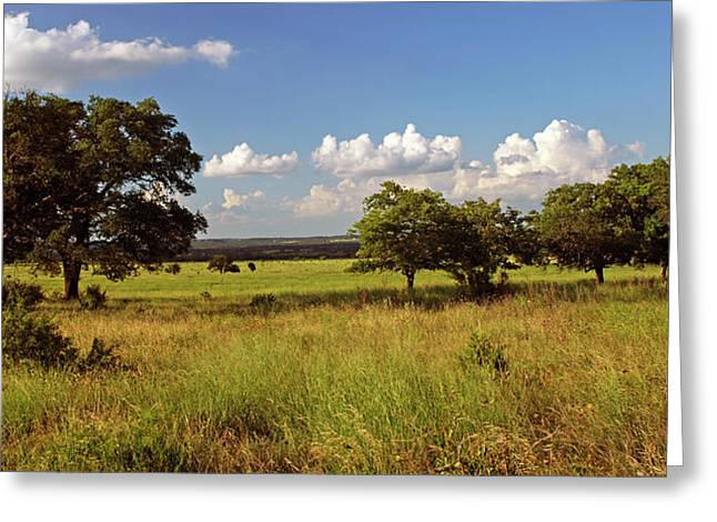 Hill Country Beauty Greeting Card by Bill Morgenstern