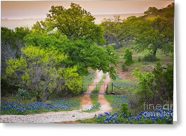 Llano Greeting Cards - Hill Country Twilight Greeting Card by Inge Johnsson