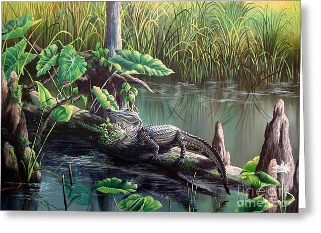 Water Lilly Greeting Cards - Hillsborough River- Breakfast Time Greeting Card by Daniel Butler