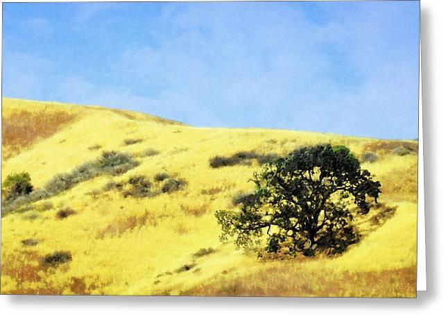 Ventura California Greeting Cards - Hillside Oak Greeting Card by Timothy Bulone