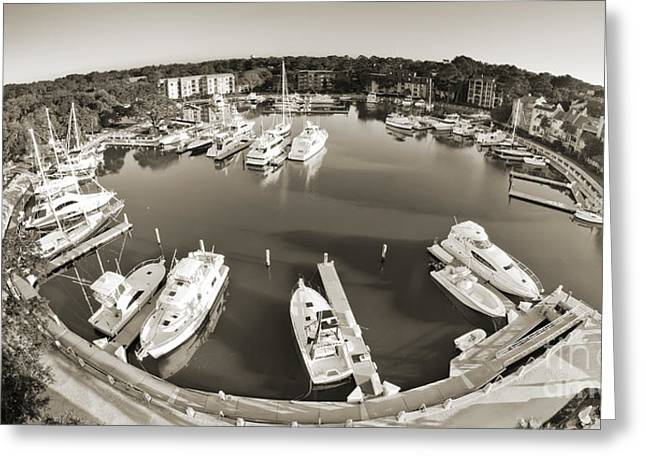 Yacht Basin Greeting Cards - Hilton Head Harbor Town Yacht Basin 2012 Greeting Card by Dustin K Ryan