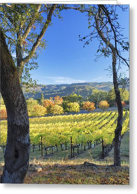 Calistoga Greeting Cards - Hint of Autumn in Calistoga Greeting Card by Doug Holck