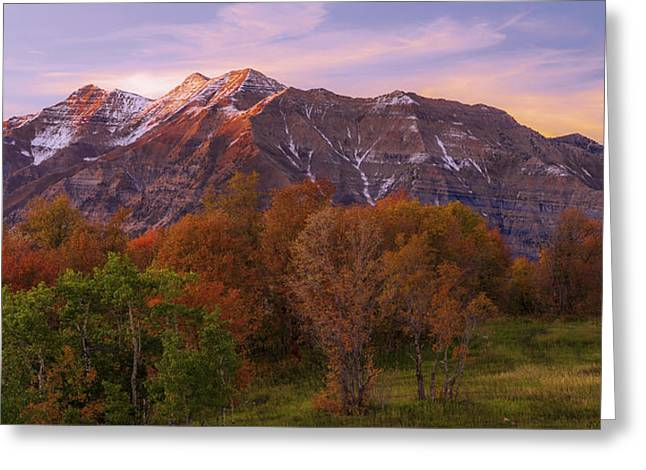 Hint Of Fall Greeting Card by Chad Dutson