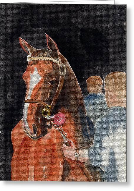 Hip No. 61 Chestnut Colt Greeting Card by Arline Wagner