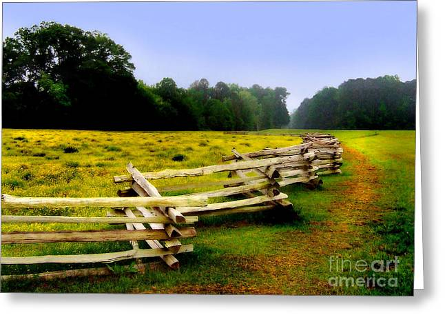 Natchez Trace Parkway Greeting Cards - Historic Path Natchez Trace Parkway Greeting Card by T Lowry Wilson