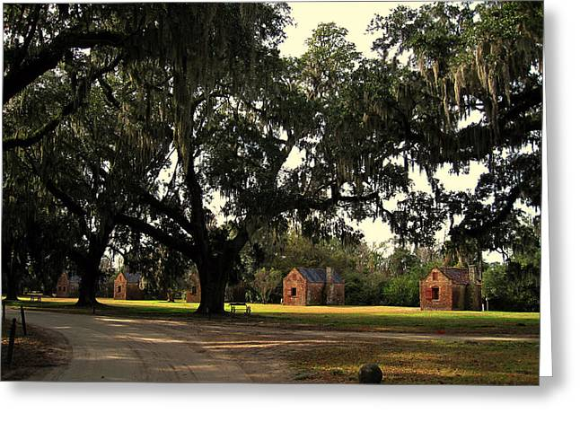 African-american Photographs Greeting Cards - Historic Slave Houses at Boone Hall Plantation in SC Greeting Card by Susanne Van Hulst