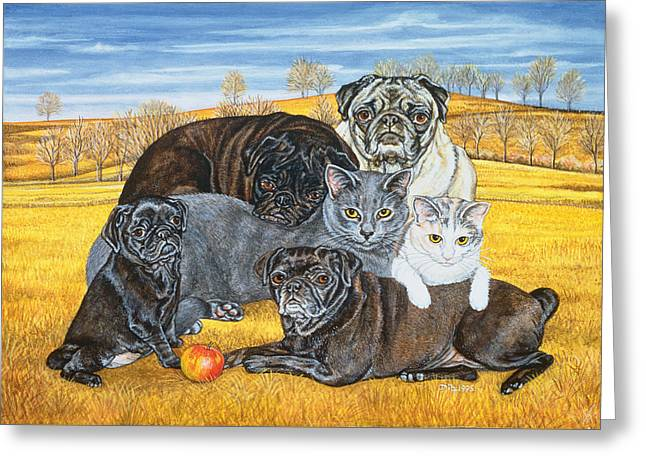 Collar Greeting Cards - Hocking County Pug Cats Greeting Card by Ditz