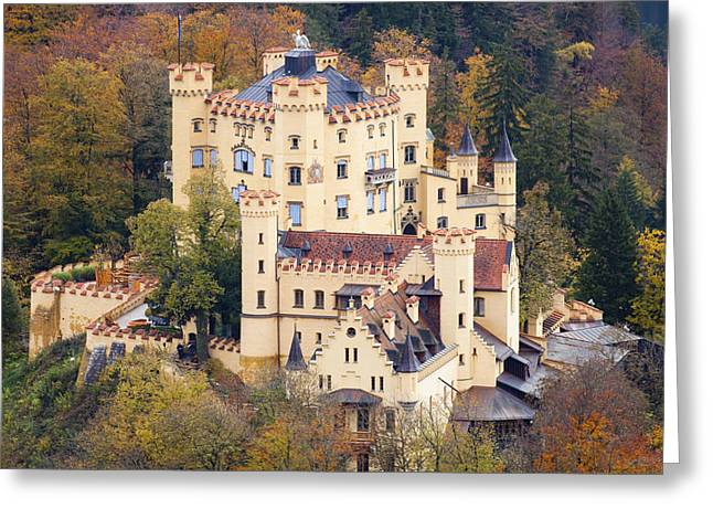 Travel Germany Greeting Cards - Hohenschwangau Castle Greeting Card by Andre Goncalves