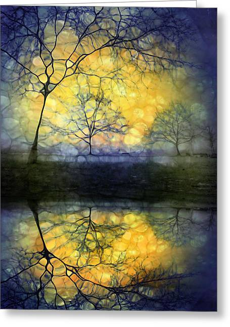 Distortion Greeting Cards - Holding in Gold Greeting Card by Tara Turner