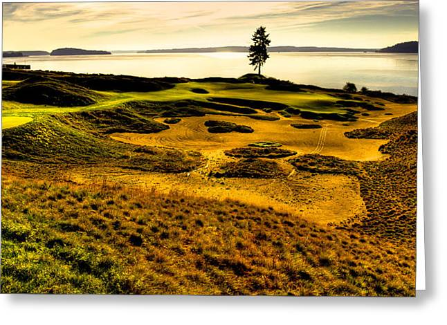 Us Open Golf Greeting Cards - Hole #15 - The Lone Fir at Chambers Bay Greeting Card by David Patterson