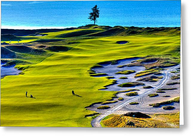 Us Open Greeting Cards - Hole #5 at Chambers Bay Golf Course Greeting Card by David Patterson