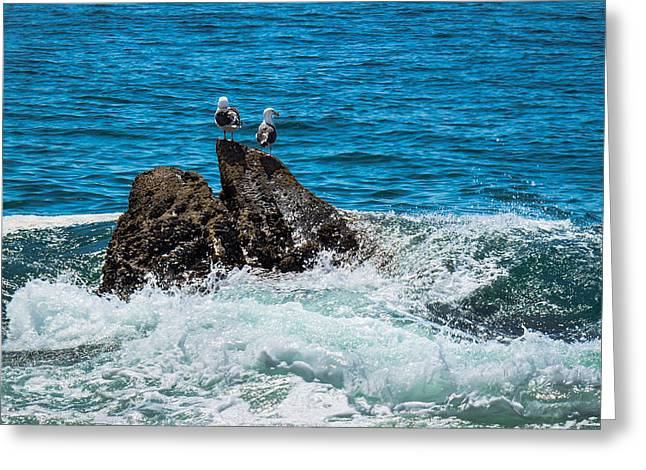 Ventura California Greeting Cards - Holes In The Water Greeting Card by Danny Goen
