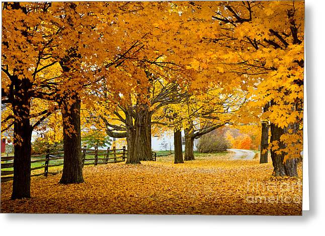 Colors Of Autumn Greeting Cards - Hollis Farm Greeting Card by Susan Cole Kelly