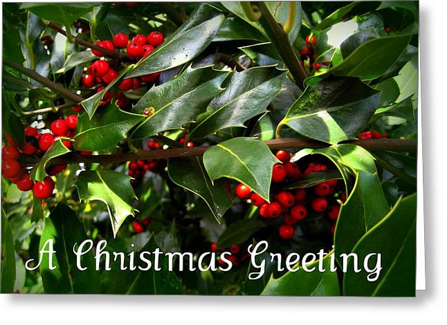 Shirley Sirois  Greeting Cards - Holly Branches Greeting Card by Shirley Sirois
