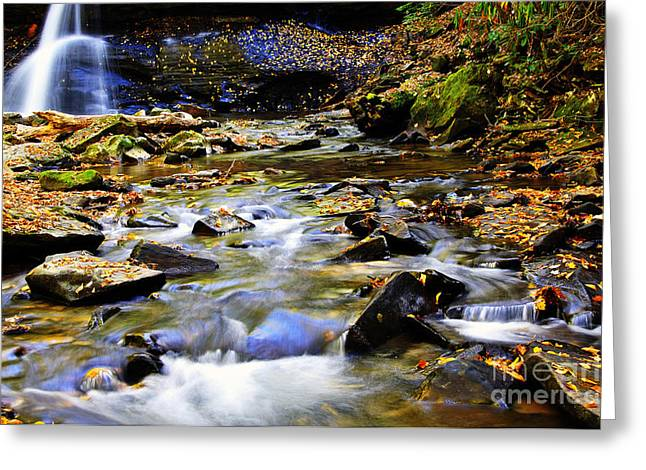 Allegheny Greeting Cards - Holly River Fall Greeting Card by Thomas R Fletcher