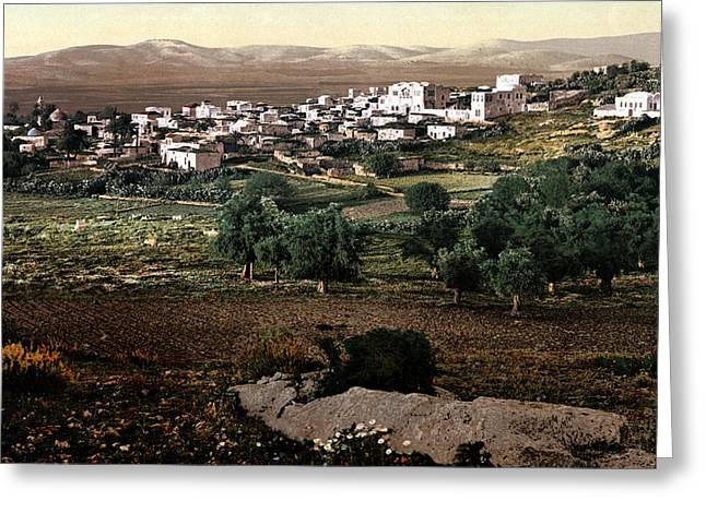 Holy Land - Jenin Greeting Card by Munir Alawi