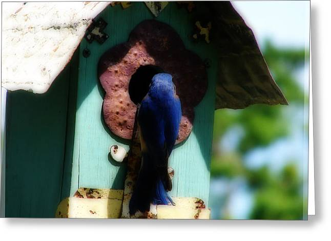 Home Again Greeting Card by Laura Brightwood