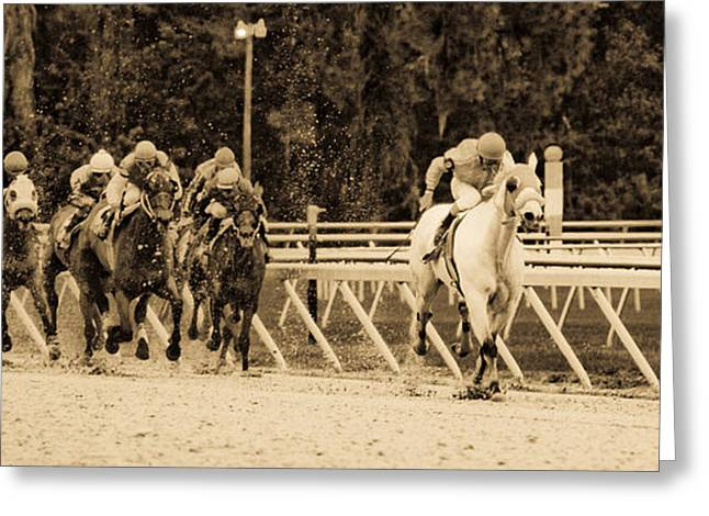 Race Horse Greeting Cards - Home Stretch Greeting Card by Patrick  Flynn
