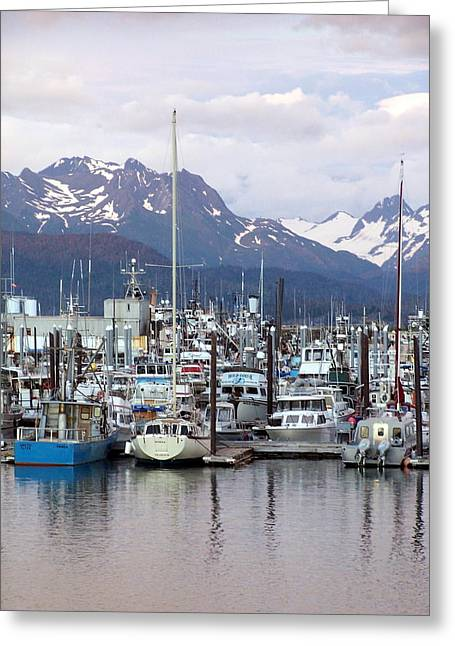 Marty Koch Greeting Cards - Homer Harbor Greeting Card by Marty Koch