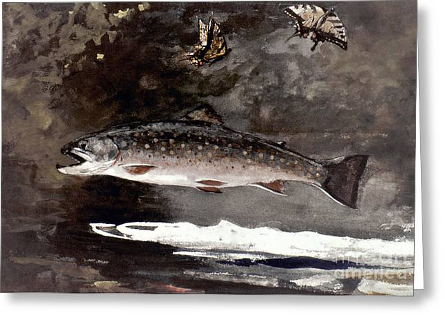 Winslow Homer Photographs Greeting Cards - Homer: Trout, 1889 Greeting Card by Granger