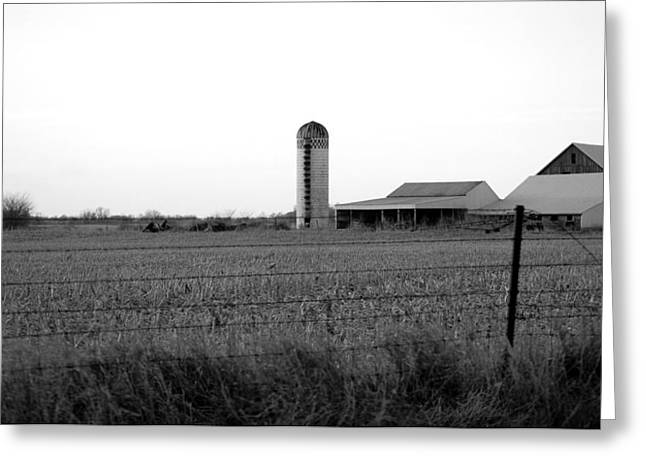 Tin Roof Greeting Cards - Homestead Greeting Card by Jame Hayes