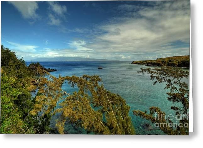Snorkel Greeting Cards - Honolua Bay Greeting Card by Kelly Wade