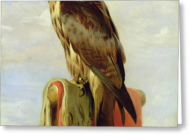Hooded Falcon Greeting Card by Sir Edwin Landseer