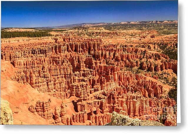 Grand Circle Greeting Cards - Hoodoos At Inspirational  Point Greeting Card by Robert Bales