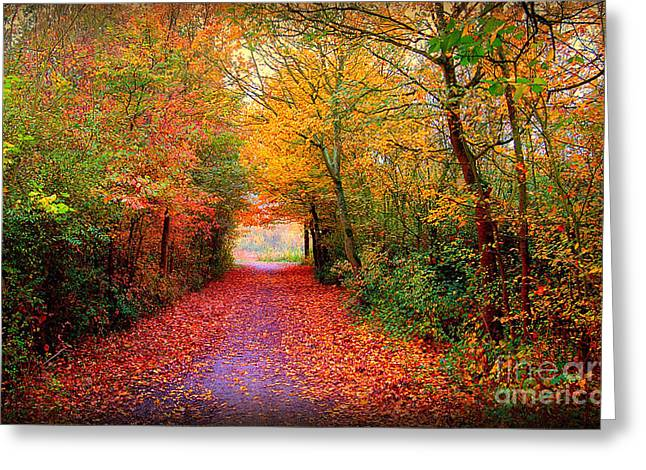 Red Leaves Digital Greeting Cards - Hope Greeting Card by Photodream Art