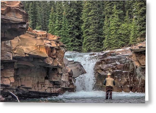 Fall Trees Greeting Cards - Hope Under the Falls Greeting Card by Phil Rispin
