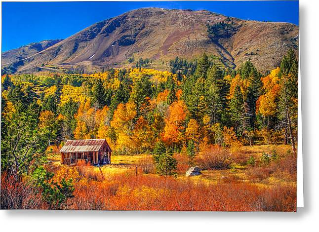 Scott Mcguire Photography Greeting Cards - Hope Valley California Rustic Barn Greeting Card by Scott McGuire