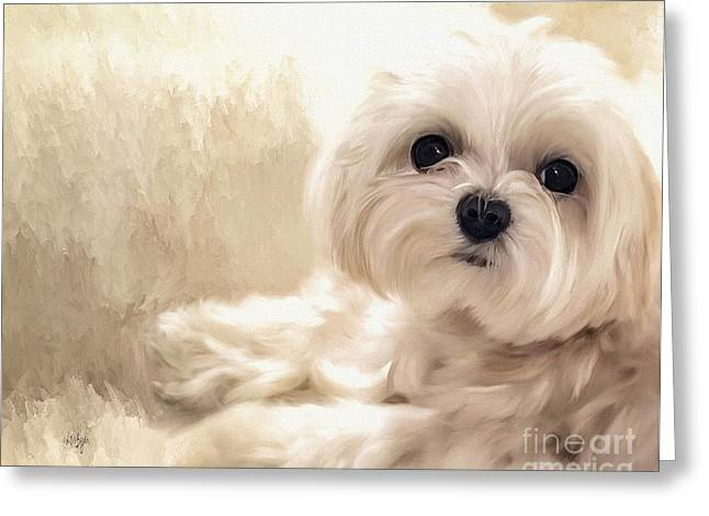 White Maltese Greeting Cards - Hoping For A Cookie Greeting Card by Lois Bryan