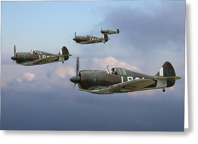 Cac Greeting Cards - Horn Island Patrol Greeting Card by Mark Donoghue