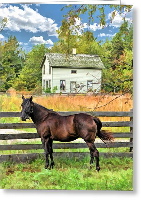 Bygone Greeting Cards - Horse and Barn at Old World Wisconsin Greeting Card by Christopher Arndt