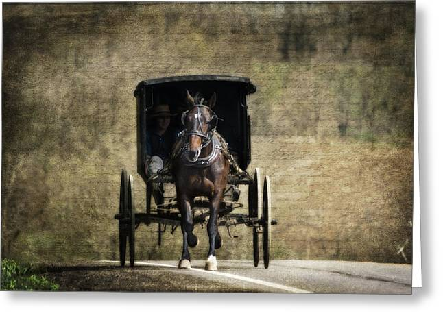 Horse And Buggy Greeting Card by Tom Mc Nemar