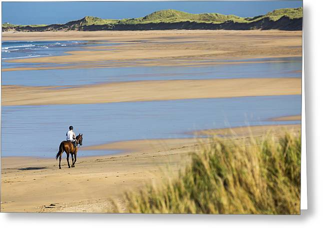 On The Beach Greeting Cards - Horse And Rider On Beach With Grassy Greeting Card by Michael Interisano