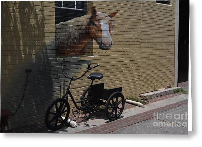 Slaves Greeting Cards - Horse and Trike Greeting Card by Don Columbus